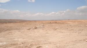 hauts-plateaux algeriens