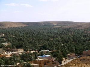 palmeraie-ghardaia-1